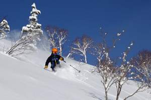 Full-Day Powder Ski Lessons